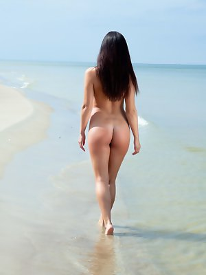 Darselle dazzles while she poses on the beach and plays in the water. pics ~ SexyNakedModels.com